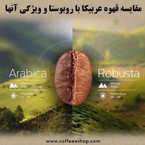 مقایسه قهوه عربیکا با روبوستا و ویژگی آنها