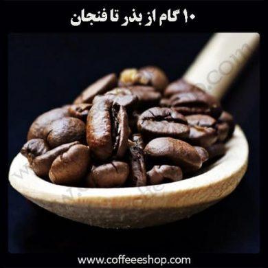 از بذر تا فنجان قهوه، همراه ما باشید