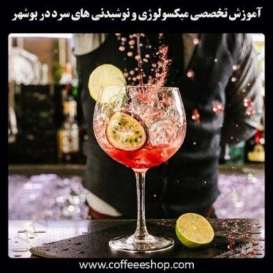 بوشهر – آموزش حرفه ای میکسولوژی و نوشیدنی های سرد با مجوز فنی حرفه ای