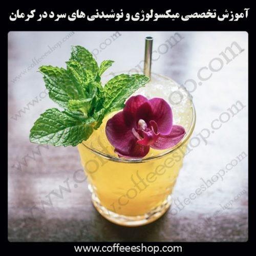 کرمان –آموزش حرفه ای میکسولوژی و نوشیدنی های سرد با مجوز فنی حرفه ای