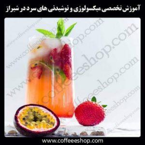 شهر شیراز | آموزش حرفه ای میکسولوژی و میکسولوژی مولکولی با مجوز فنی حرفه ای در شهر شیراز